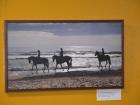 Foto galerijos nuotrauka